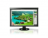 Eizo - ColorEdge CG245 Preto (calibrador incluído)