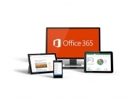 Microsoft-Office 365 Business SubsVL OLP NL Annual