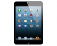 Apple - iPad mini with Wi-Fi + Cellular 16GB - Black & Slate